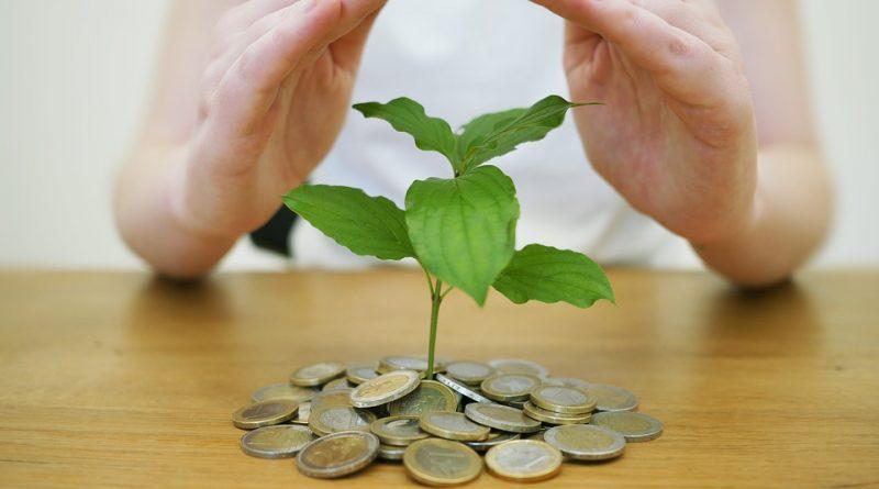 Do čeho investovat? Češi jsou zastánci pozemků