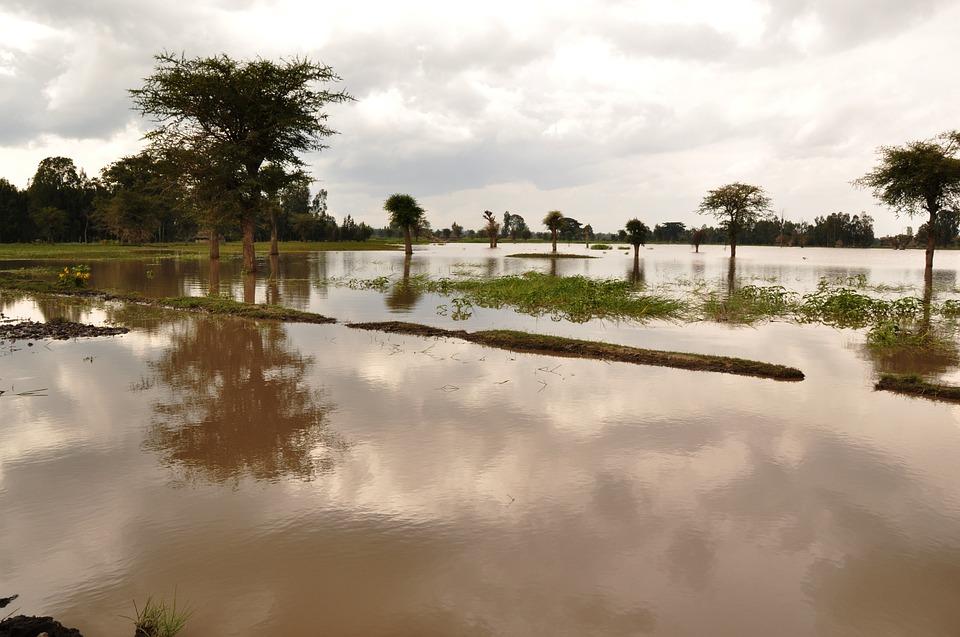 přírodní katastrofy